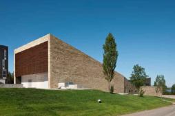 Taller WINETWORK sobre gestión de Enfermedades de la Madera de la Vid (EMVs) y Flavescencia Dorada (FD) en La Rioja