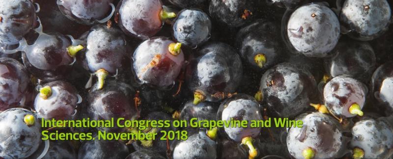 Del 7 al 9 de noviembre imprescindible cita con el International Congress on Grapevine and Wine Sciences