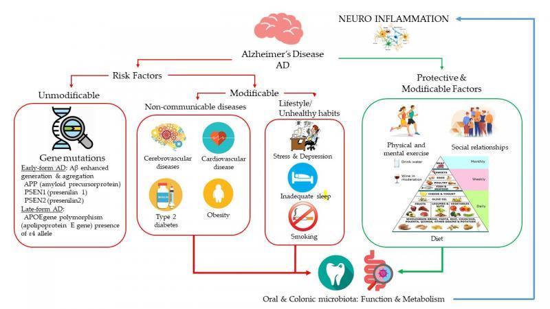Figura de Nutrientes