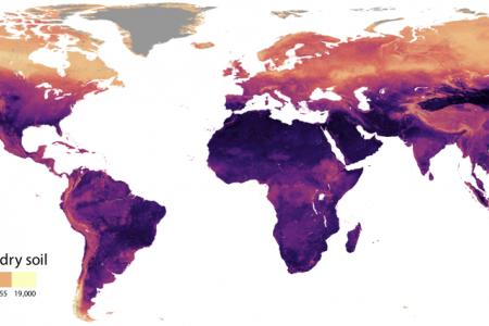 El ICVV participa en un análisis geoespacial mundial sobre nematodos del suelo
