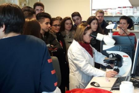 Jornadas de visitas al ICVV para Centros de Enseñanza Secundaria Obligatoria (ESO)